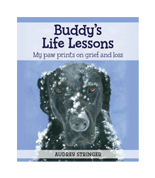 Buddy's Life Lessons book cover