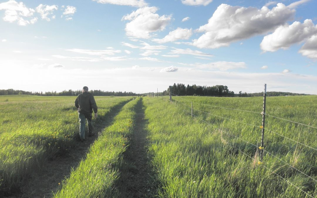 Bringing safety into focus on the farm