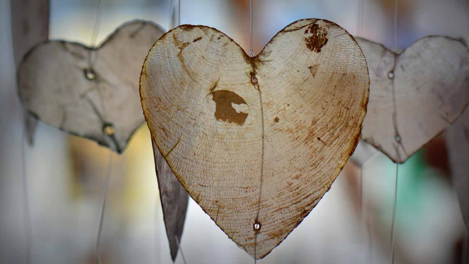 three paper-thin wood shavings shaped like hearts