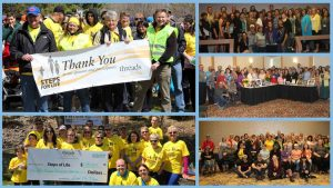Collage of group photos from Family Forums and Steps for Life walks