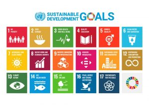 UN Sustainable Development Goal icons with logo