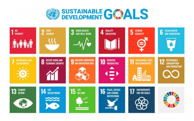 Threads of Life and the UN's Sustainable Development Goals