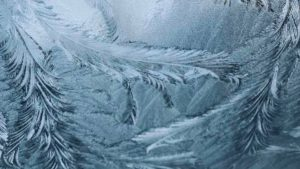 Ice pattern on a window forms whimsical feather-like patterns