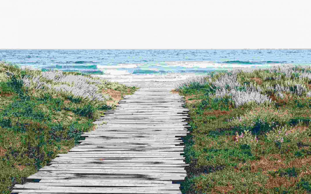 The Ocean {Poem}